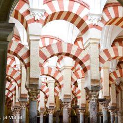 mezquita-arcos