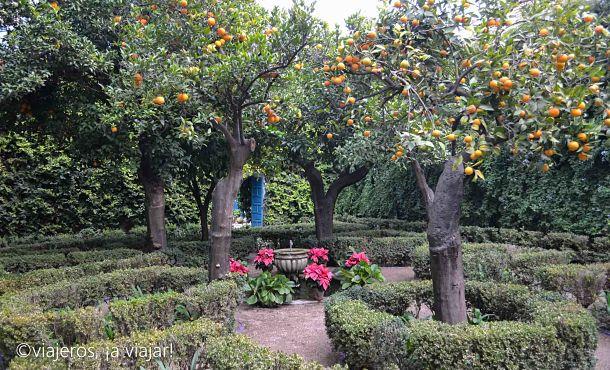 Patios palacio Viana. Patio de los naranjos