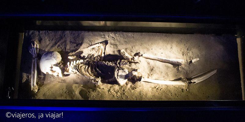 FENICIOS. restos humanos