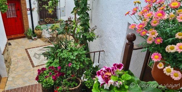 Flores de Benalauría
